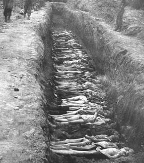 Photo: Prisoners' bodies laid out in a mass grave.