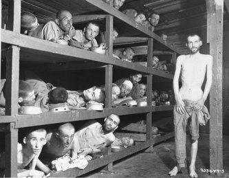 Photo: Former prisoners of the 'little camp' in Buchenwald, Germany, stare out from the wooden bunks in which they slept three to a 'bed'.